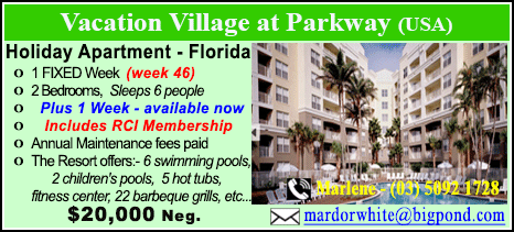 Vacation Village at Parkway - $20000