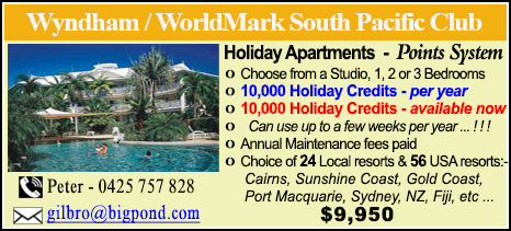 Wyndham Vacation Resorts - $9950